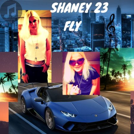 SHANEY 23 x FLY